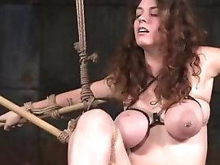 Roundass Honey Submits To Male Domination During Domination & Submission